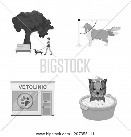 Walking with a dog in the park, combing a dog, a veterinarian's office, bathing a pet. Vet clinic and pet care set collection icons in monochrome style vector symbol stock illustration .