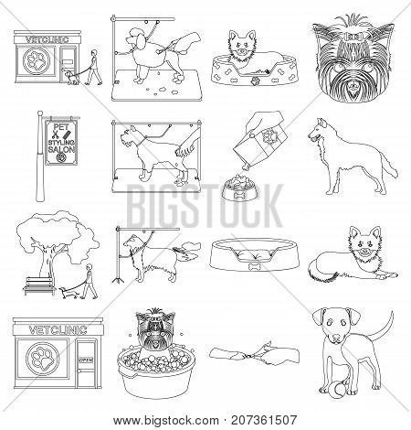 Walking with a dog, a vet clinic, a dog haircut, a puppy bathing, feeding a pet. Vet clinic and pet care set collection icons in outline style vector symbol stock illustration .