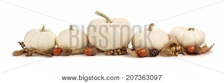 Autumn Border Arrangement Of White Pumpkins And Brown Leaves Isolated On A White Background