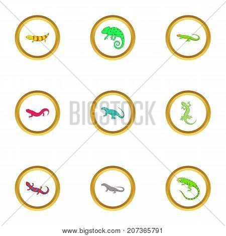 Different lizard icons set. Cartoon style set of 9 different lizard vector icons for web design