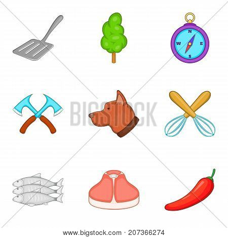 Selection of meat icons set. Cartoon set of 9 selection of meatvector icons for web isolated on white background