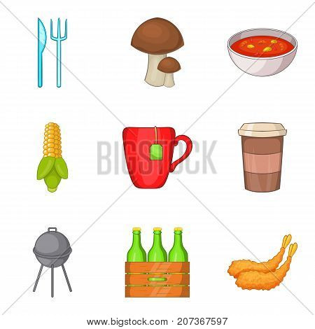 Outdoor barbecue icons set. Cartoon set of 9 outdoor barbecue vector icons for web isolated on white background