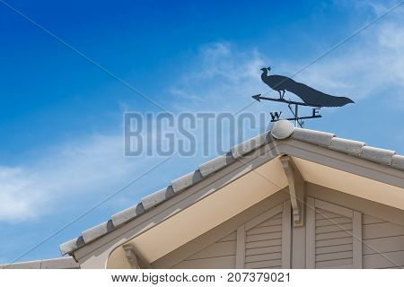 Weather vane with peacock above an arrow and the four cardinal points North East West South.