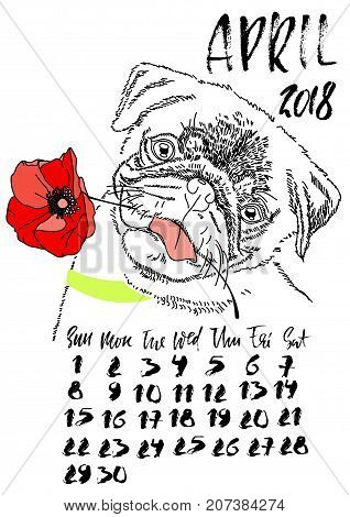 Calendar with dry brush lettering. April 2018. Dog with red poppy flower. Cute pug portrait. Vector illustration