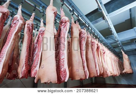 Refrigerator meat storage with handing sides in pork butchery.