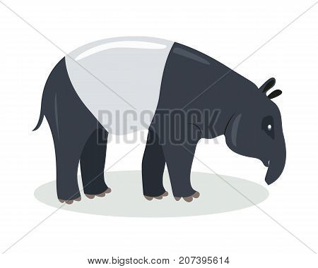 Malayan tapir cartoon character. Cute malayan tapir flat vector isolated on white. Asian fauna species. Tapir icon. Wild animal illustration for zoo ad, nature concept, children book illustrating