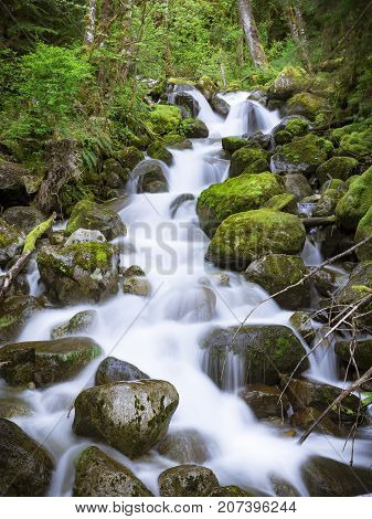 Slow shutter photography of vibrant colors in woods with fluid creek