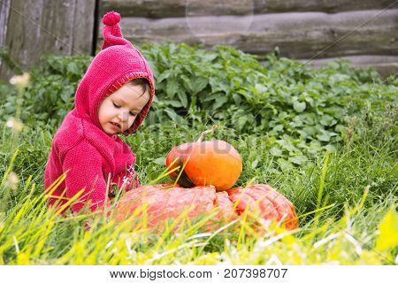 a small serious child in a purple gnome suit sits on a floor of a turn with two pumpkins in the grass and looks down. There is a copy space for the inscription halloween. Farm wooden wall.