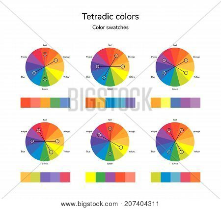 vector illustration of color circle, infographics, palette, tetradic color swatches