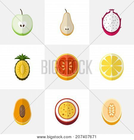 Set Of 9 Editable Berry Flat Icons. Includes Symbols Such As Citrus, Pitaya, Watermelon And More