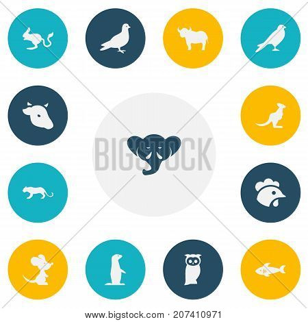 Set Of 13 Editable Zoology Icons. Includes Symbols Such As Rooster, Bull, Lynx And More