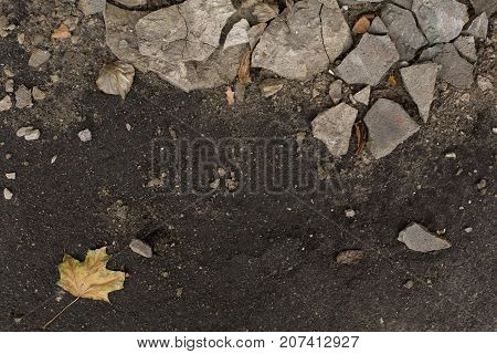 Dark autumn damp ground with pieces of plaster