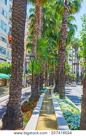 Floral Decoration Of Ataturk Boulevard In Antalya