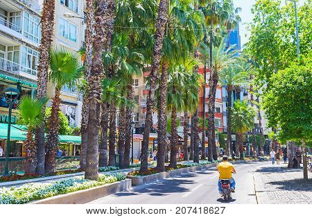 Ataturk Boulevard In Antalya