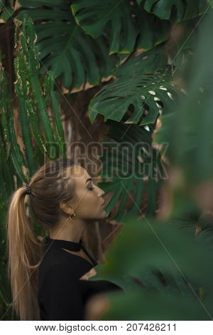 She stands against the background of large leaves. Trend leaves. Fashionable background. A beautiful girl with braided hair in a tall tail and dressed in a black blouse with a black choker.