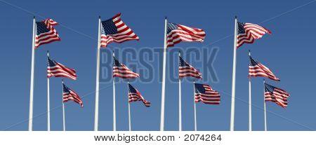 Flag Rows