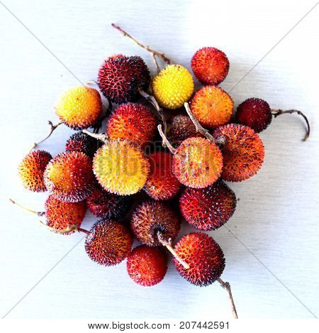 Edible red berries of the arbutus tree or shrub native to warm temperate Mediterranean regions.