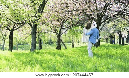 Beautiful senior couple in love on a walk outside in spring nature under blossoming trees, man carrying woman in his arms, turning around.