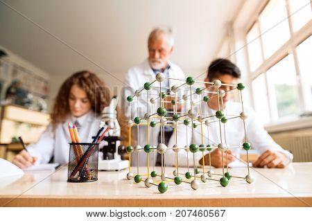 Senior teacher teaching biology to his high school students in laboratory. Modecule model.
