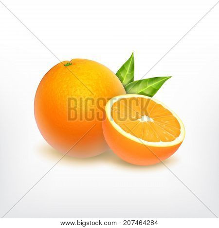 Orange fruit and orange slice. Vector icon. 3d illustration. EPS10 vector