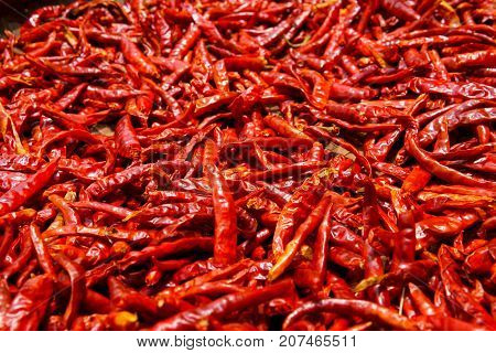 Pile Of Dried Red Chilli Pepper For Abstract Background. Chilli Is Asian Vegetable For Spicy Ingredi