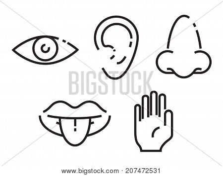 Icon set of the five human senses: vision eye smell nose hearing ear touch hand taste mouth with tongue. Simple minimal line icons vector illustration.