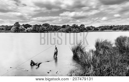 Pen Ponds in summer under a overcast sky in the English countryside