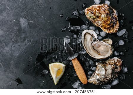 Open oyster with lemon and oyster knife on a dark background. Copy space. view from above