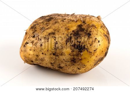 Dirty Potato Isolated On White Background.