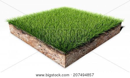 Green grass land piece isolated on white background. 3D illustration.