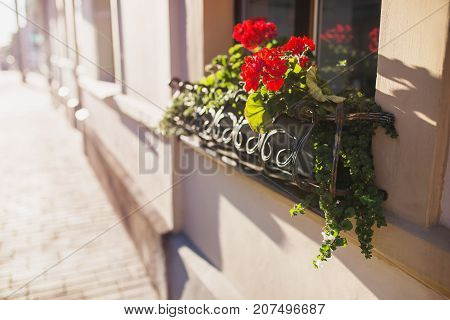 Beautiful well-kept facade of balcony with red flowers with warm sunset. Walking around the European city with flower facade. Old facade. Beautiful facade with flowers. The facade of the house is on the street. Facade of the house with a balcony
