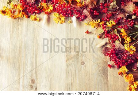 Autumn background with seasonal autumn nature berries and autumn flowers on the wooden background. Vintage autumn still life with free space. Autumn composition made of seasonal autumn berries and flowers. Autumn background