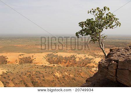 Bandiagara Escarpment in Mali, Africa