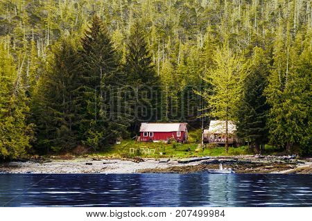 Two old houses on the coast of an Alaskan waterway surrounded by massive evergreens