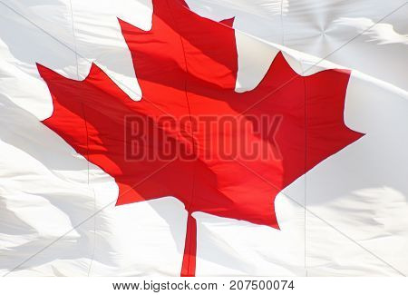 The Red and White Canada Flag with the symbolic Maple Leaf