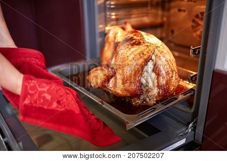 Close-up of a senior woman taking a freshly roasted, crispy, appetizing turkey out of the oven on the kitchen background. Stuffed turkey cooking.