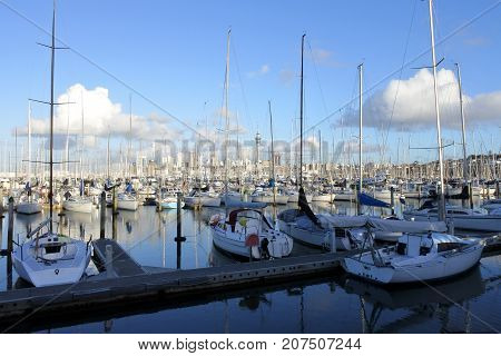 Landscape View Of Westhaven Marina Auckland New Zealand