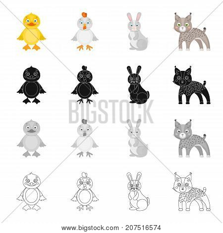Chicken, baby, bird, and other  icon in cartoon style.Farm, toys, beast icons in set collection