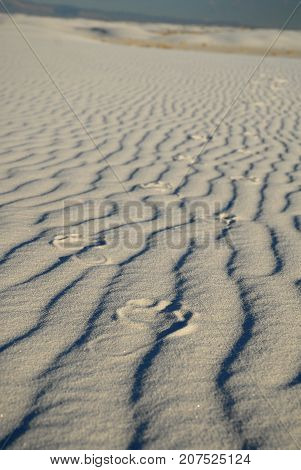 Footsteps left in white gypsum sand from White Sands National Monument.