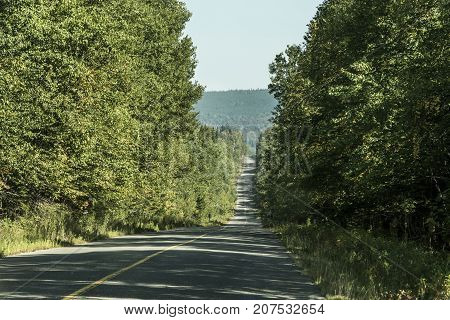 Old Canada forest Highway in new Brunswick to Nova Scotia