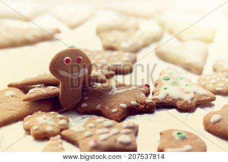 cookie in the shape of a cheerful mushroom among other different shapes/ appetizing Christmas jokes