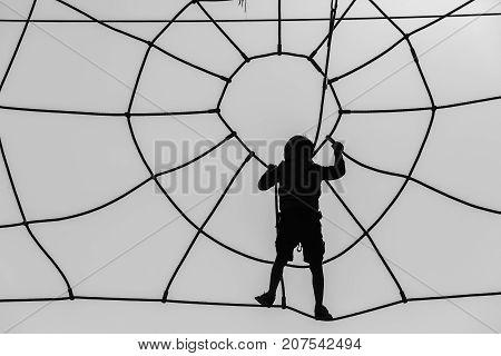 Boy Climbing Spiderweb