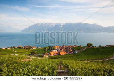 Vineyards of the Lavaux region over lake Leman (lake of Geneva)Switzerland