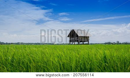 farmland and hut of people in countryside Thailand
