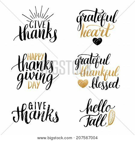 Vector Thanksgiving lettering for invitations or festive greeting cards. Handwritten calligraphy set Grateful Heart, Hello Fall etc.