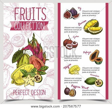 Banner or brochure with exotic tropical fruits. Durian or durio, papaya or pawpaw, feijoa and common fig, carambola and passion fruit or passionfruit. Restaurant sign, vegan food theme