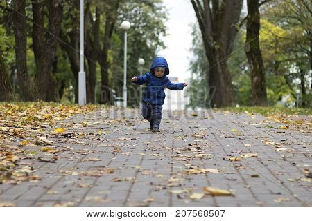 Baby's First Steps. The First Independent Steps. Toddler Running In The Autumn Park