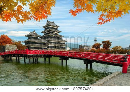 Matsumoto Castle in Autumn at Matsumoto city Nagano prefecture Japan. Beautiful autumn in Japan.