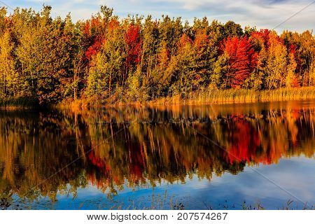 Reflection of colorful changing season in New Brunswick, Canada.