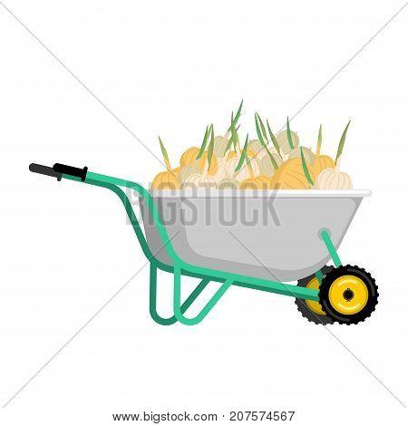 Wheelbarrow And Onion. Vegetables In Garden Trolley. Big Harvest Vector Illustration